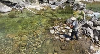 Stage de pêche à la mouche dans les Hautes-Pyrénées