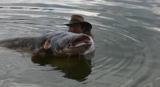 Pêche du silure en Touraine