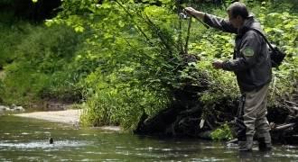 Pêche de la truite aux leurres