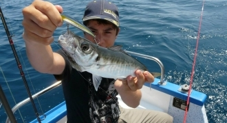 Discover sea fishing in the Mediterranean sea