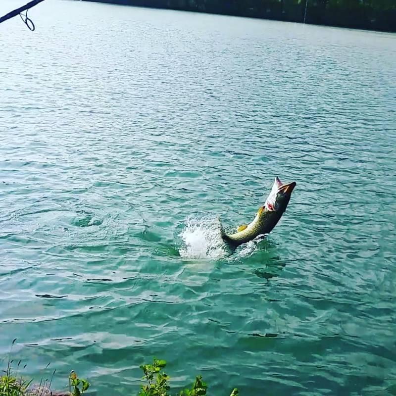 Initiation à la pêche des carnassiers dans les Hautes-Pyrénées