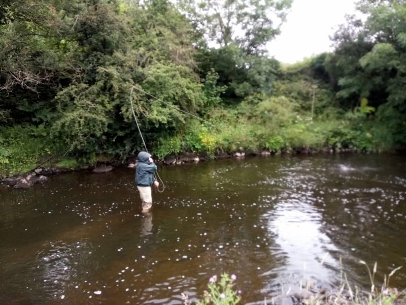 Journée de guidage de pêche à la mouche