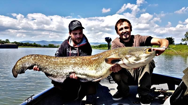 Stage de pêche du silure sur la Saône