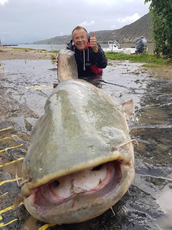 Pêche au Silure à Mequinenza
