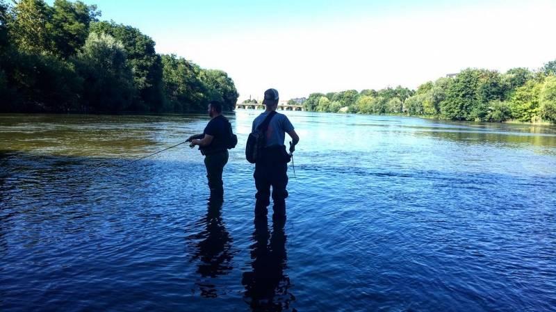 Pêche de l'aspe en Moselle