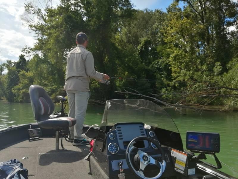 Pêche du silure et carnassiers sur le Rhône