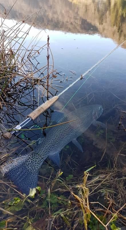 Pêche à la mouche au réservoir du Lac des Graves