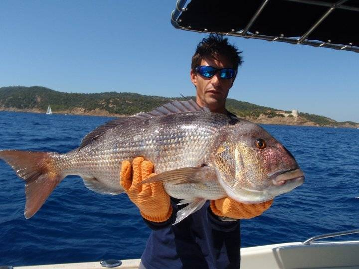 Trolling fishing in the Lavandou