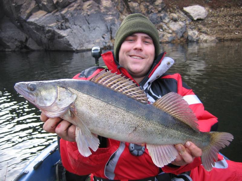 Fishing for pike, zander and perch in dam lakes of Massif Central