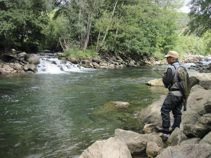 Perfectionnement de la pêche à la mouche en sèche dans les Pyrénées