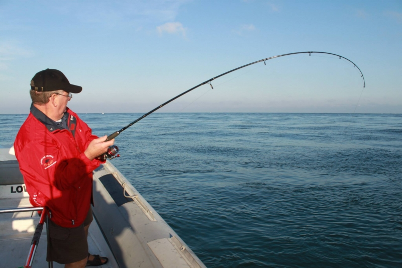 Fishing seabass with lures and live bait in Arcachon