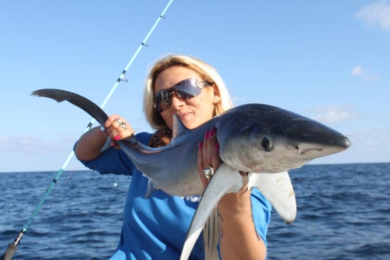 Shark fishing  in Arcachon