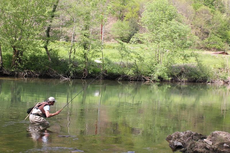 Pêche au tenkara dans les Pyrénées-Atlantiques
